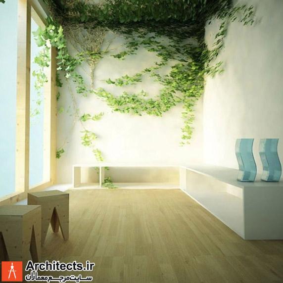 11 نمونه دکوراسیون داخلی با طراحی خلاقانه بر روی دیوار ها