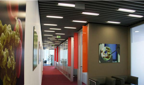 طراحی متفاوت دفاتر اداری شرکت بایر پارسیان در تهران